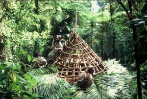 peuples racines